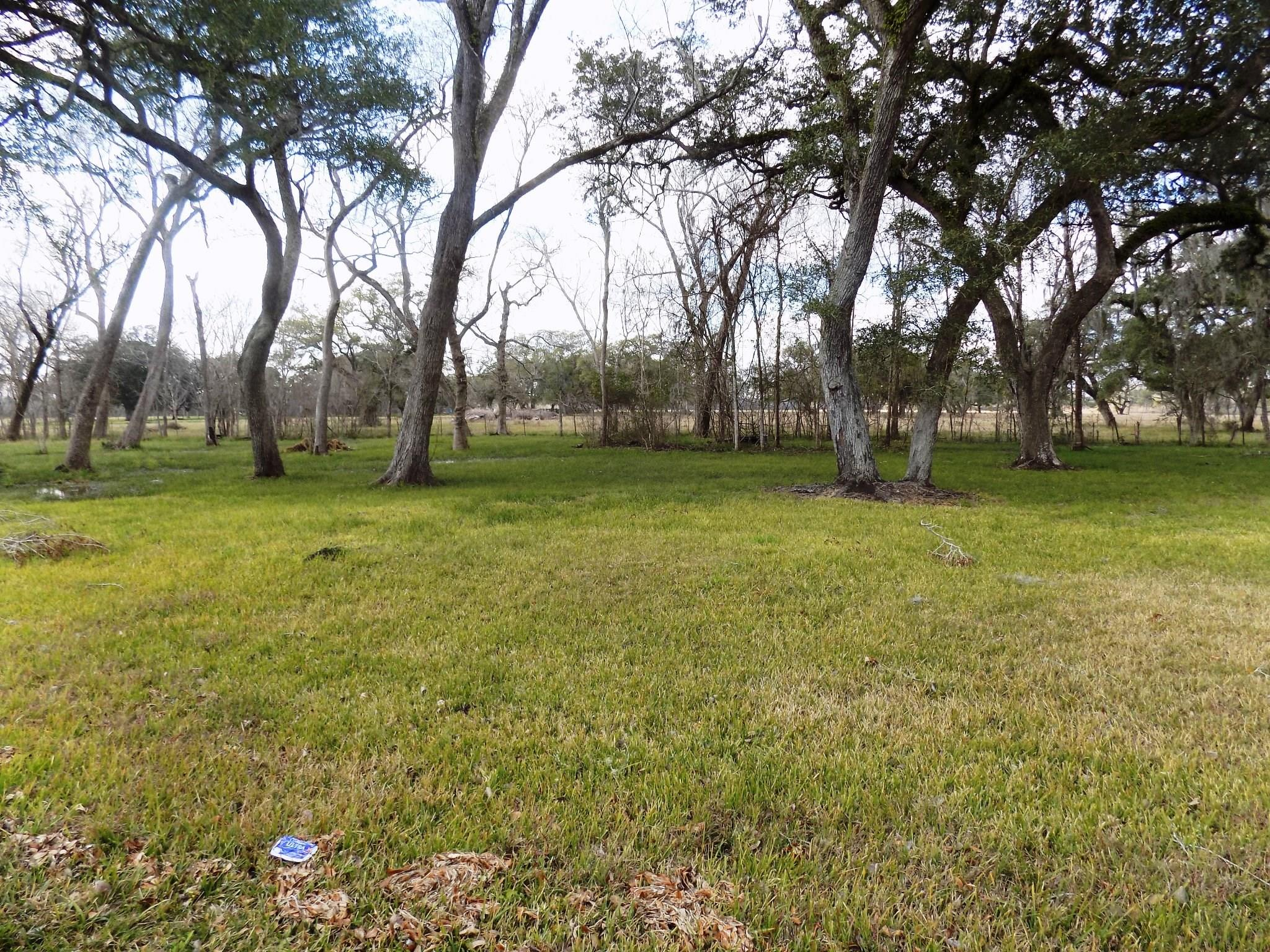 4-6 County Road 161 Shilo Loop Property Photo - Cedar Lane, TX real estate listing