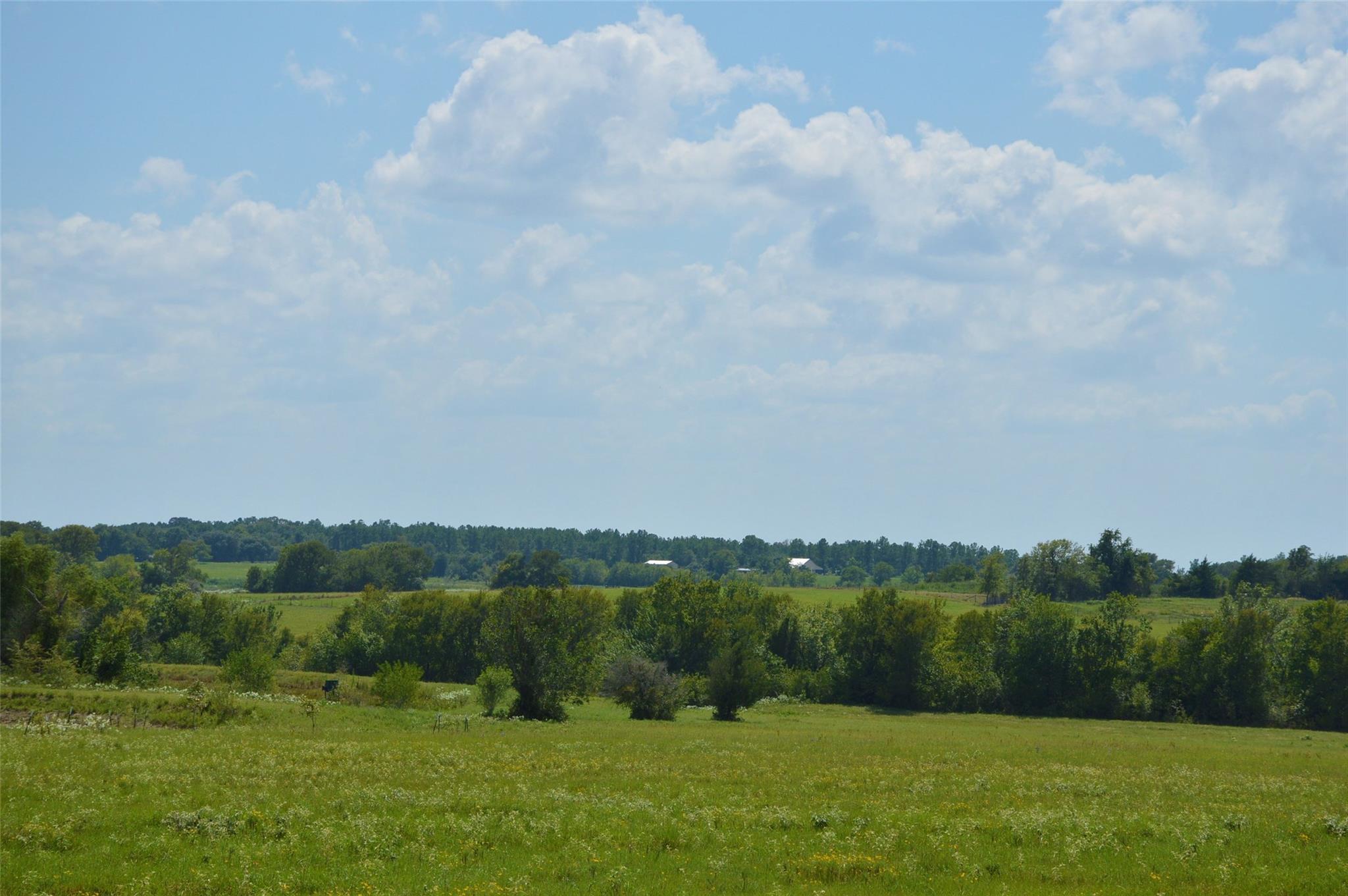 0031 Fm 149 - 31 Acres Road E Property Photo