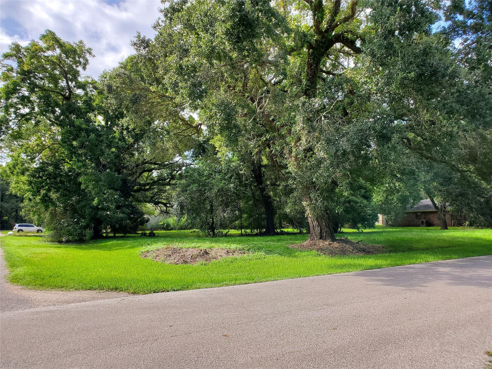 0 Spencer P8 Drive Property Photo - Jones Creek, TX real estate listing