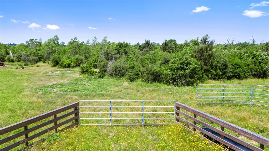 000 Piney Woods Rd Property Photo - Alleyton, TX real estate listing