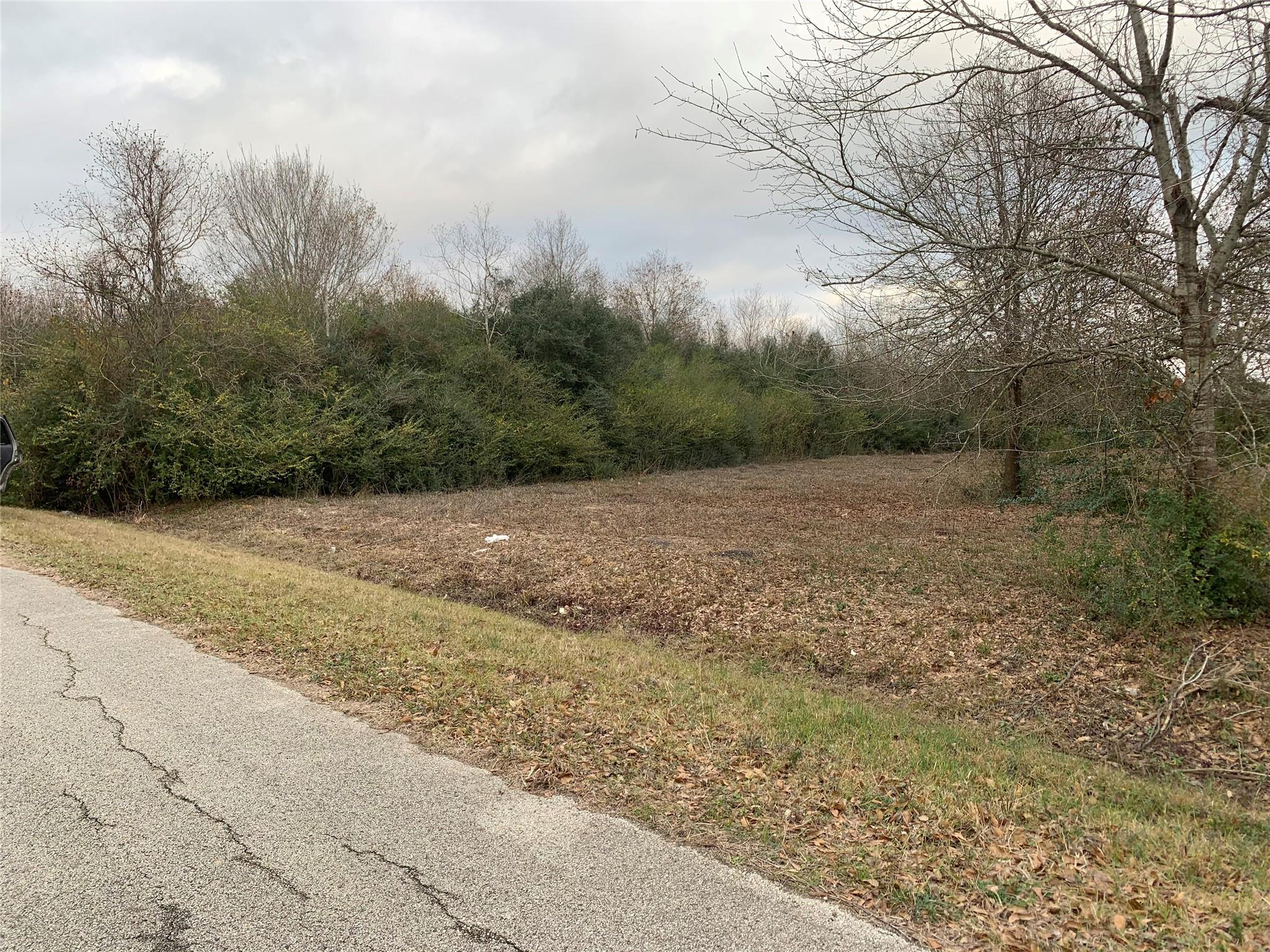 0 Alleda Road Property Photo - Prairie View, TX real estate listing