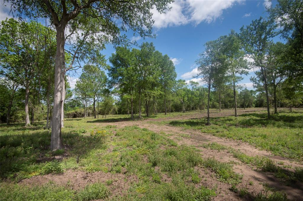 2945 Woodland Ranch Lane, Chappell Hill, TX 77426 - Chappell Hill, TX real estate listing