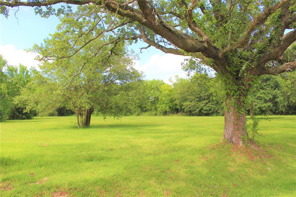 17200 E Highway 6 Property Photo - Santa Fe, TX real estate listing