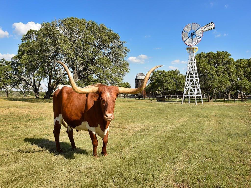 236 Doss Spring Creek Road Property Photo - Fredericksburg, TX real estate listing