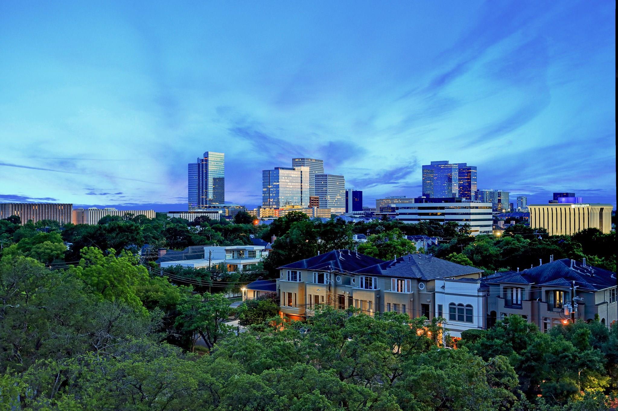 2710 Steel Street #605 Property Photo - Houston, TX real estate listing