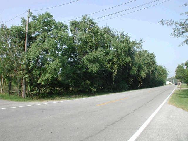 2902 Washington Drive Property Photo - Houston, TX real estate listing