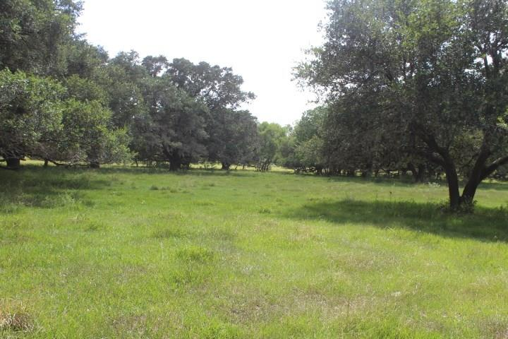 25015 County Road 25, Damon, TX 77430 - Damon, TX real estate listing