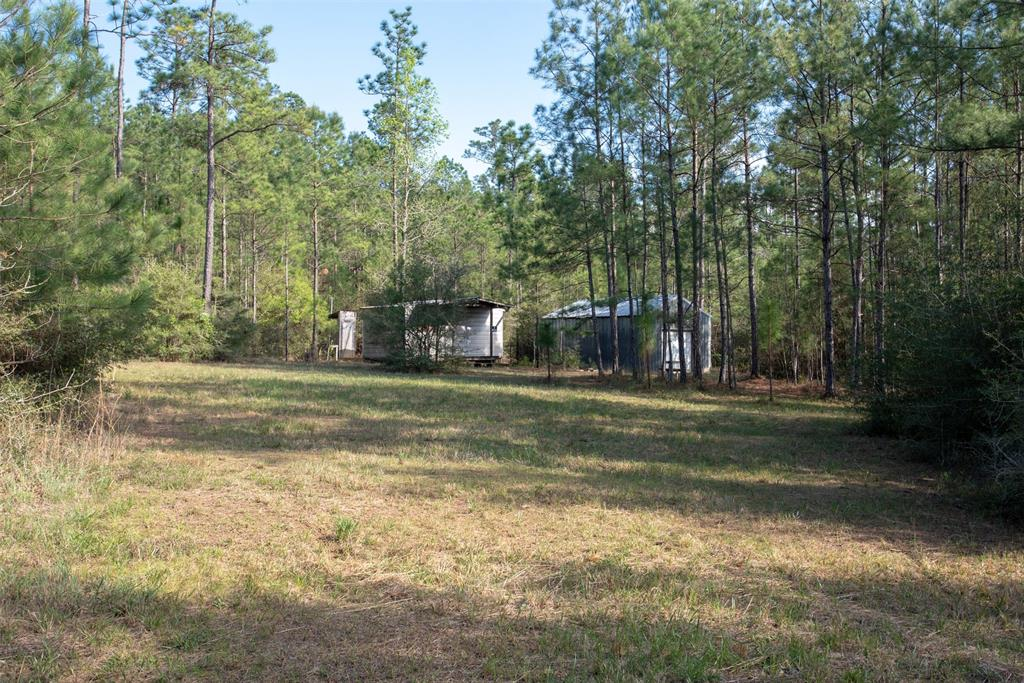 Off Timberlake Drive Property Photo - Warren, TX real estate listing