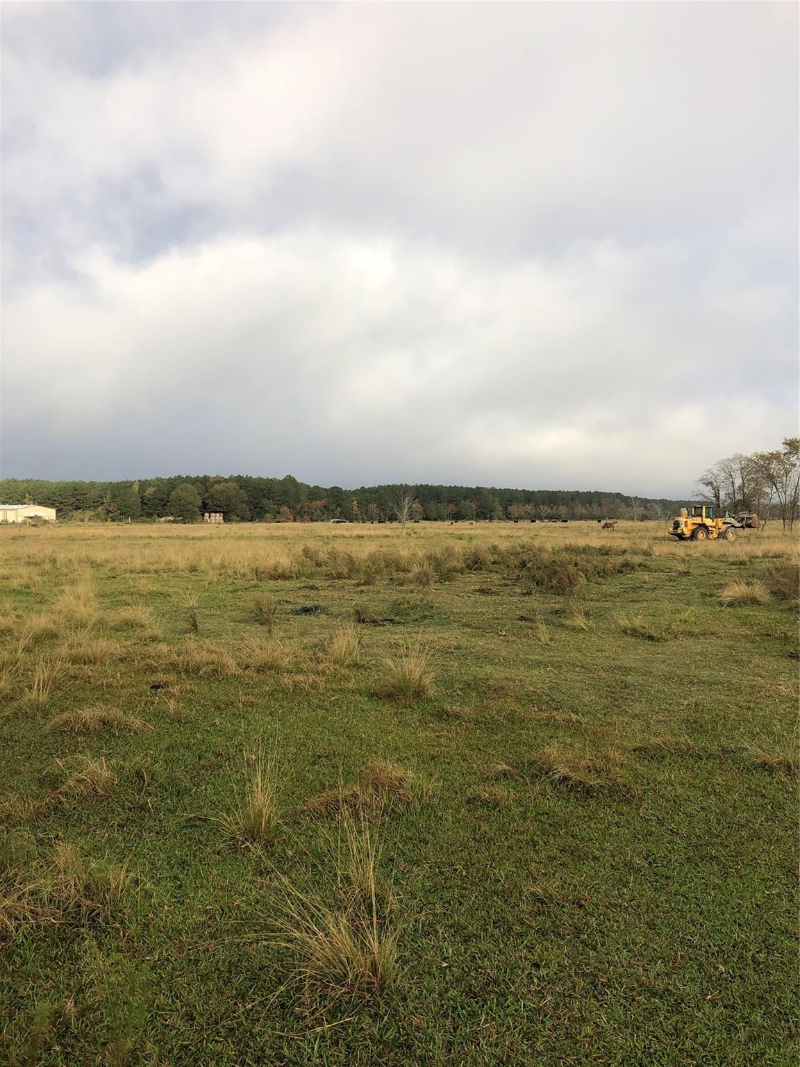 10ac County Road 2276 Property Photo