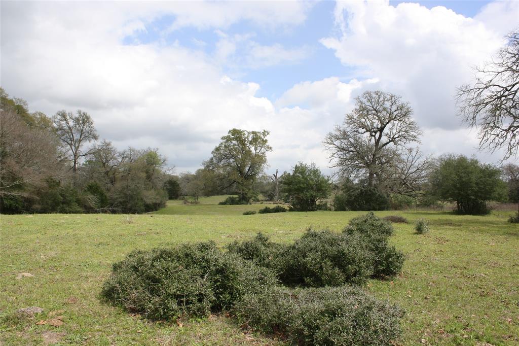 000 Moye Road Property Photo - Carmine, TX real estate listing