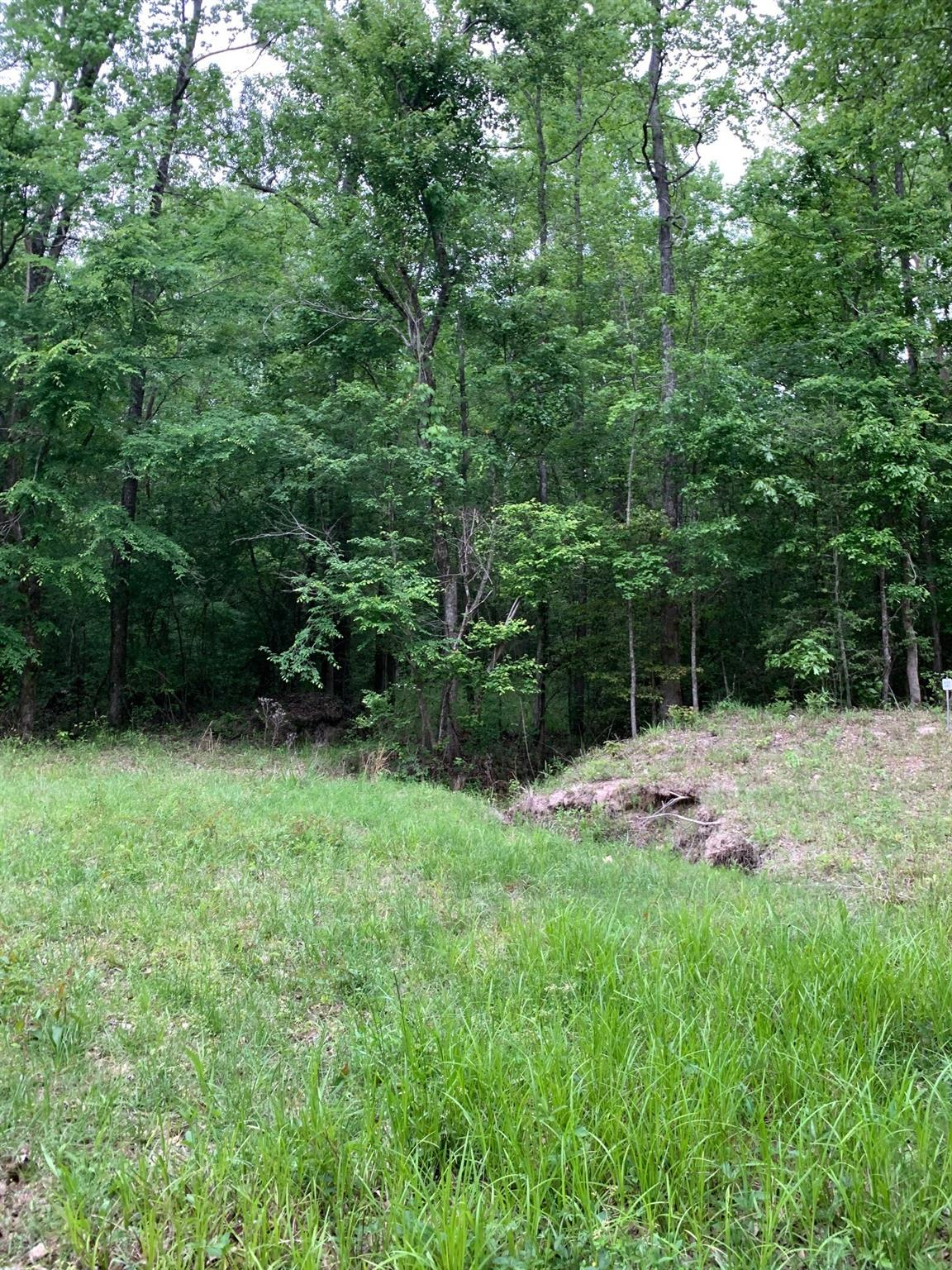 0 Clarence Mcqueen Road Property Photo - Camden, TX real estate listing