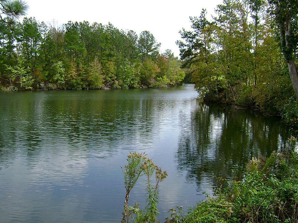 47 Deer Ridge, Romayor, TX 77327 - Romayor, TX real estate listing