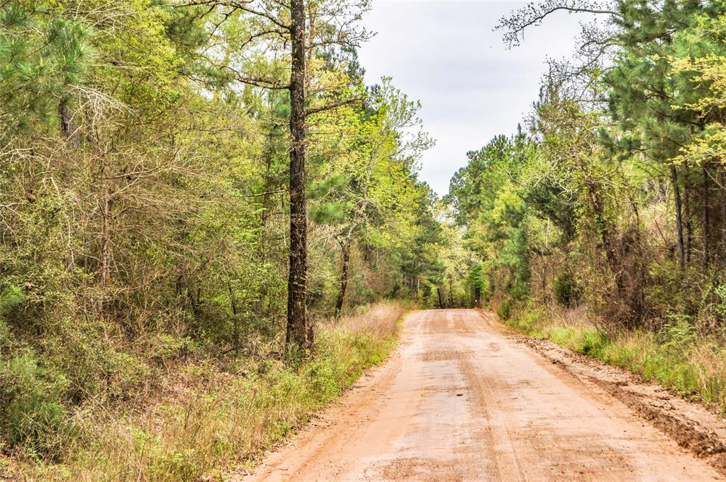 000 CR 2213 Property Photo - Rusk, TX real estate listing