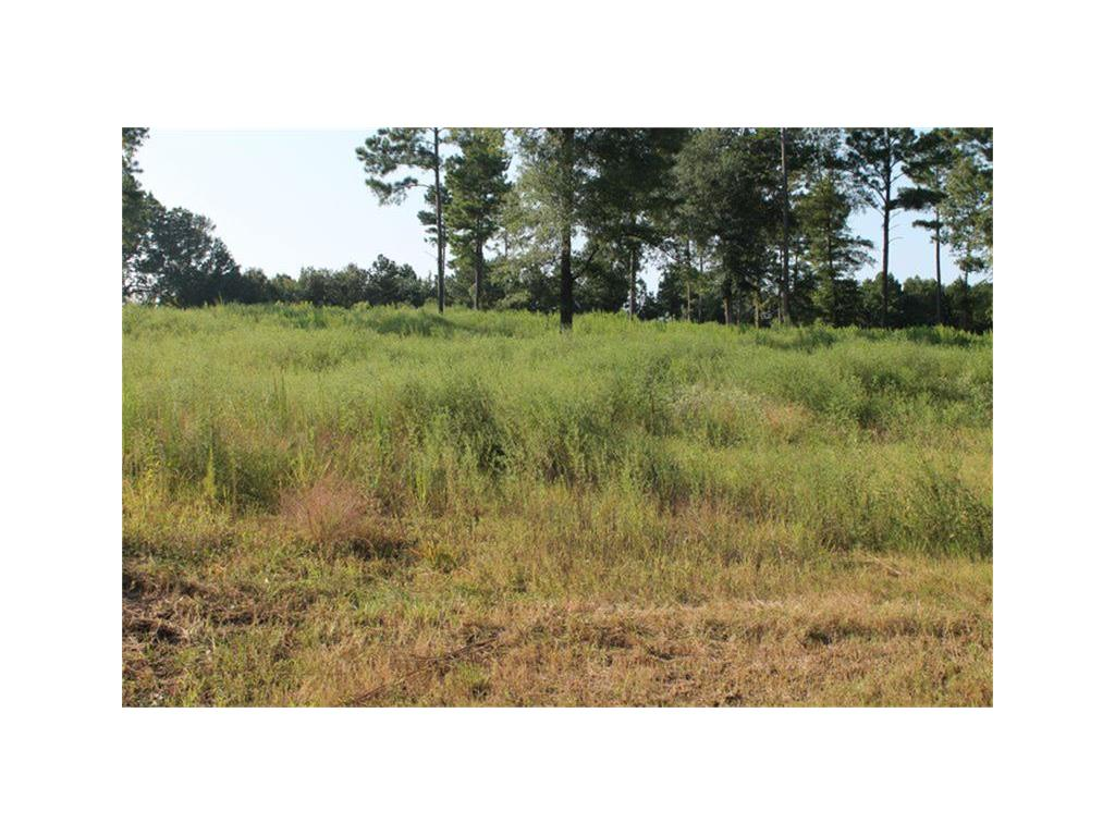 TBD Oquinn Road, Pollok, TX 75969 - Pollok, TX real estate listing