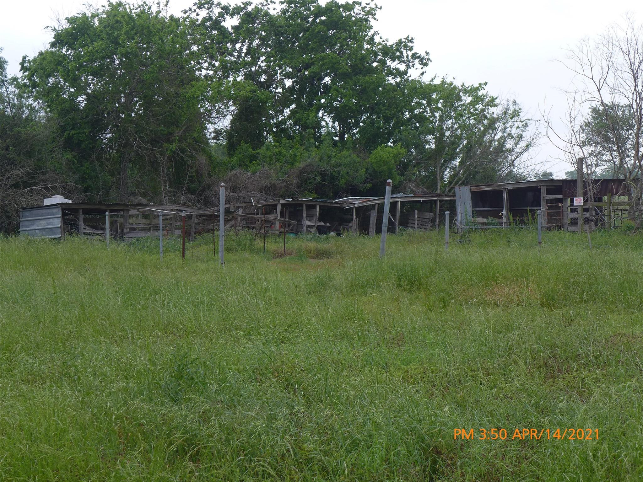3416 Kurkendall Road Property Photo - Beasley, TX real estate listing