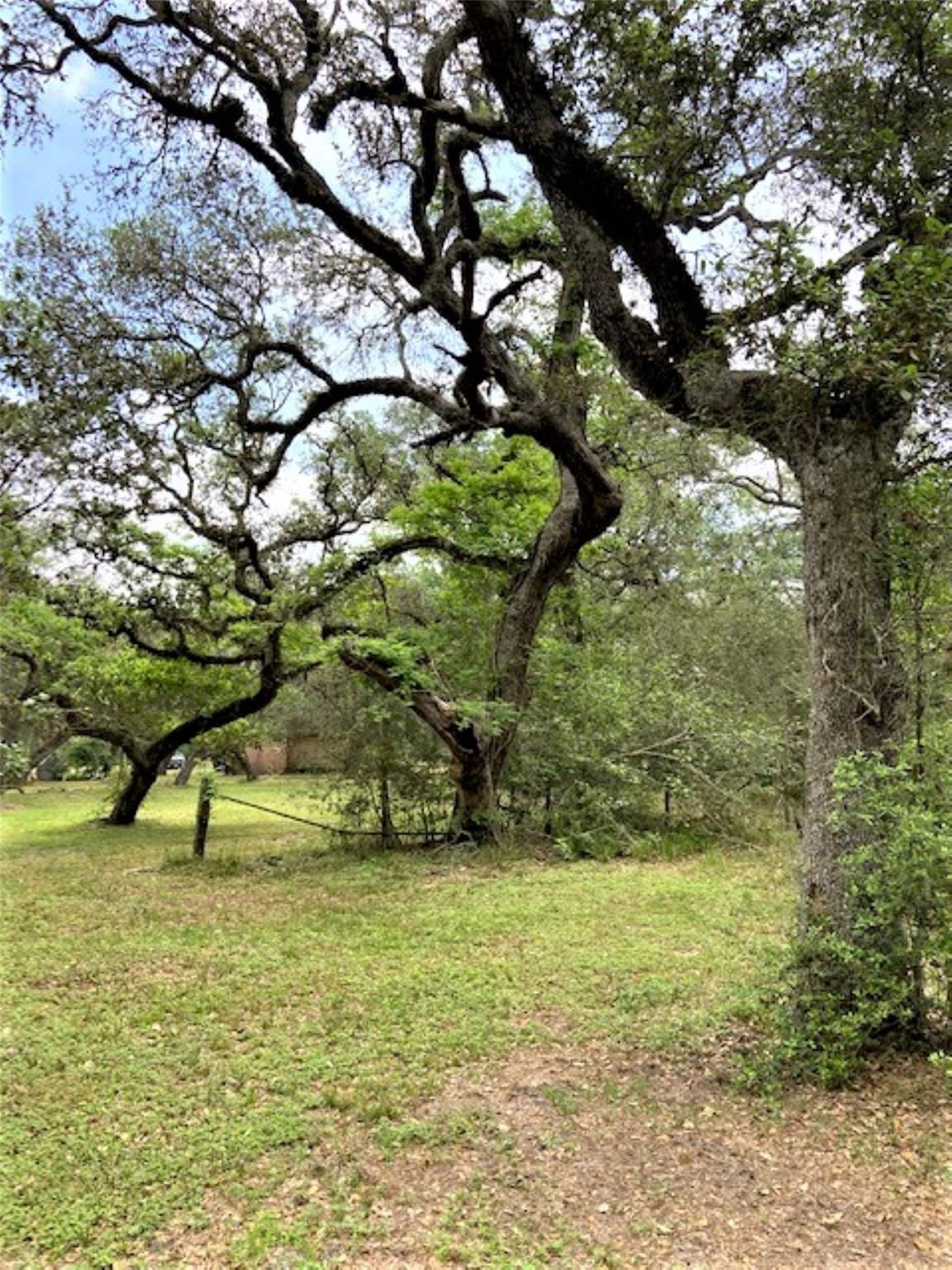 0 County Road 399 Property Photo - Louise, TX real estate listing