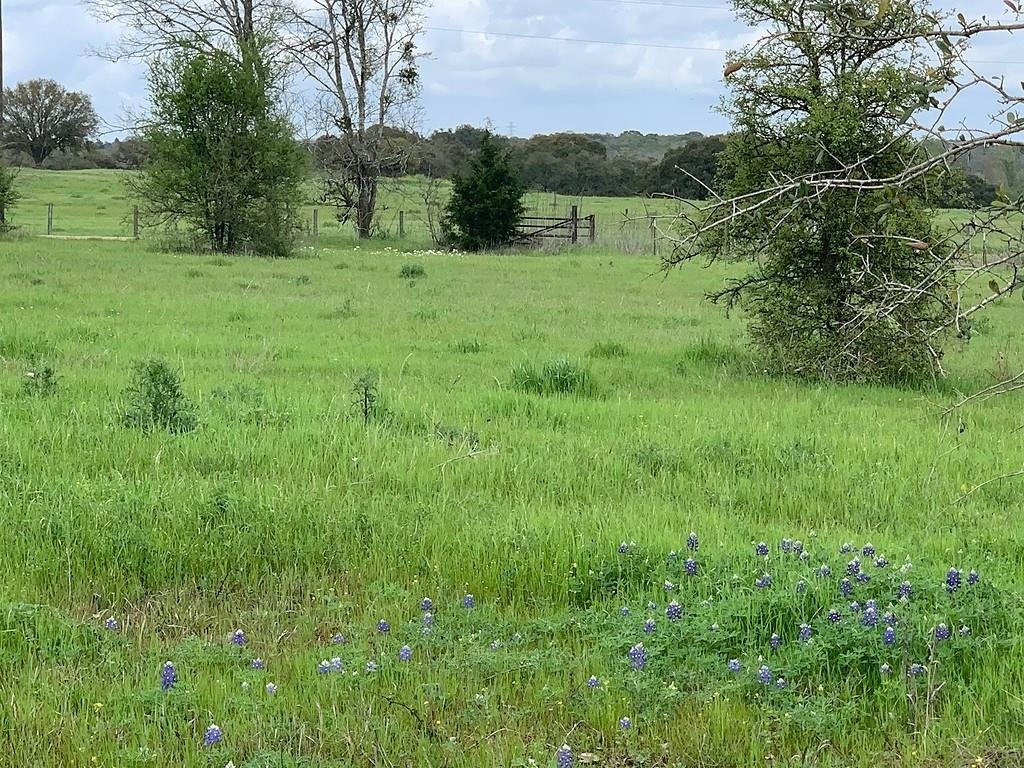 000 Kamas Road, Brenham, TX 77833 - Brenham, TX real estate listing