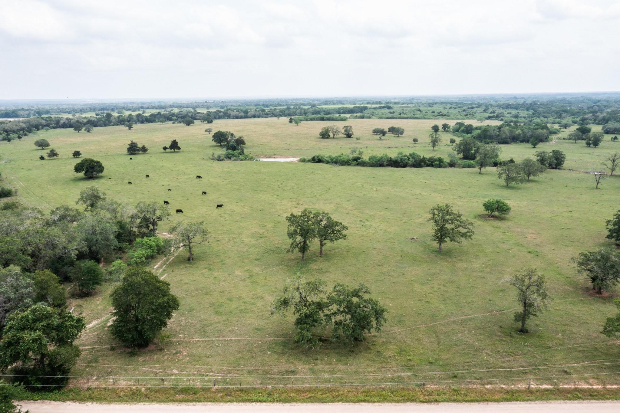 03 Sparta Field Road Property Photo
