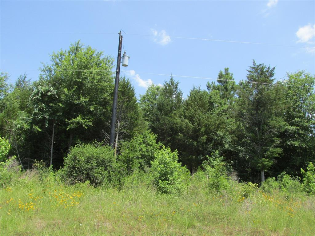 Lot 6R Murchison Street Property Photo - Palestine, TX real estate listing