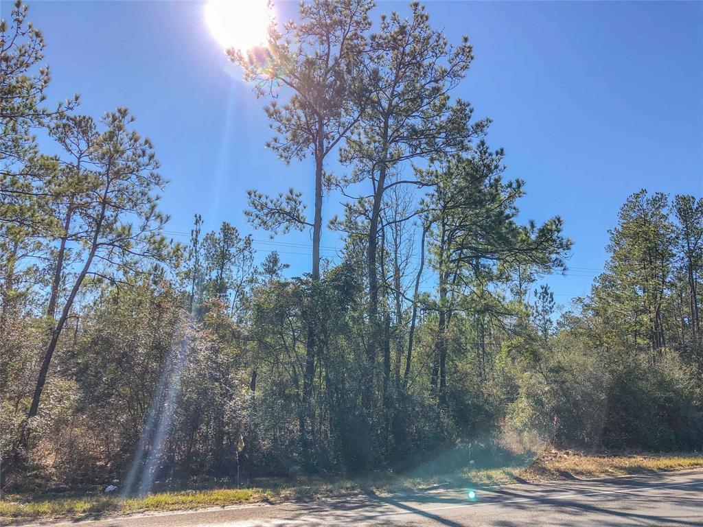 00 Hwy 326 Property Photo - Kountze, TX real estate listing