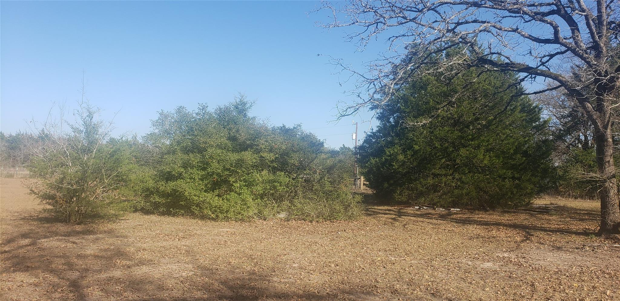 12719 Emu Lane Property Photo - North Zulch, TX real estate listing