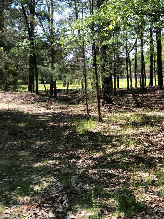 573,CR 4195,, Lovelady, TX 75851 - Lovelady, TX real estate listing