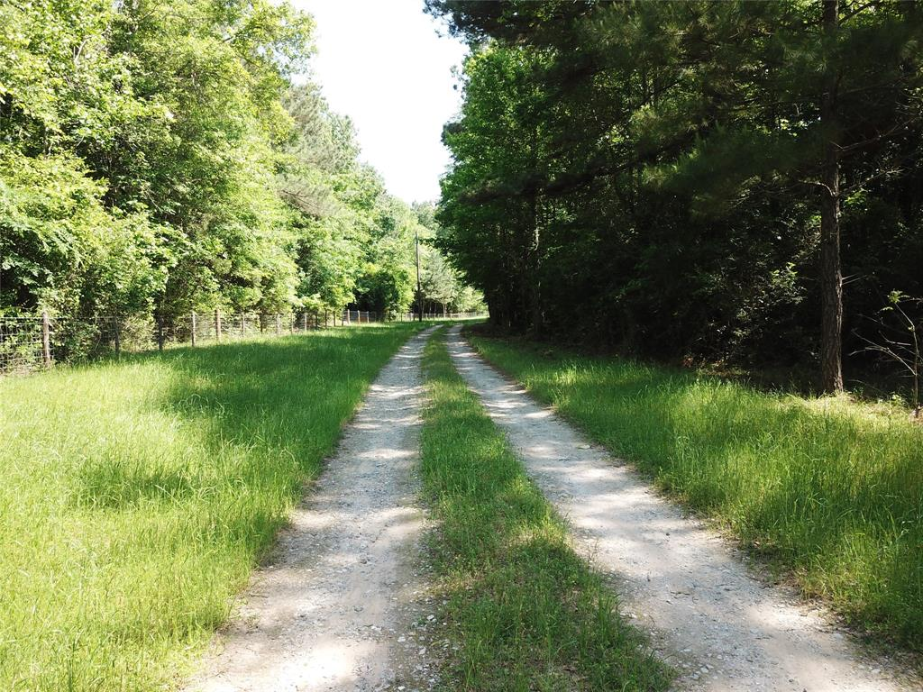 00 County Road 448, Carthage, TX 75633 - Carthage, TX real estate listing