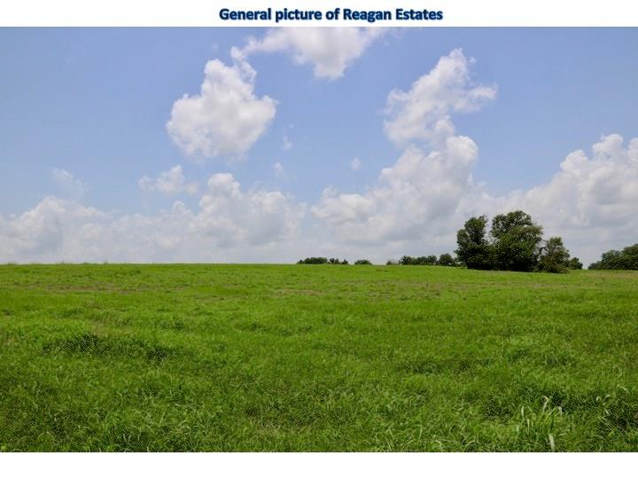 Lot 9 REAGANS WAY, Navasota, TX 77868 - Navasota, TX real estate listing