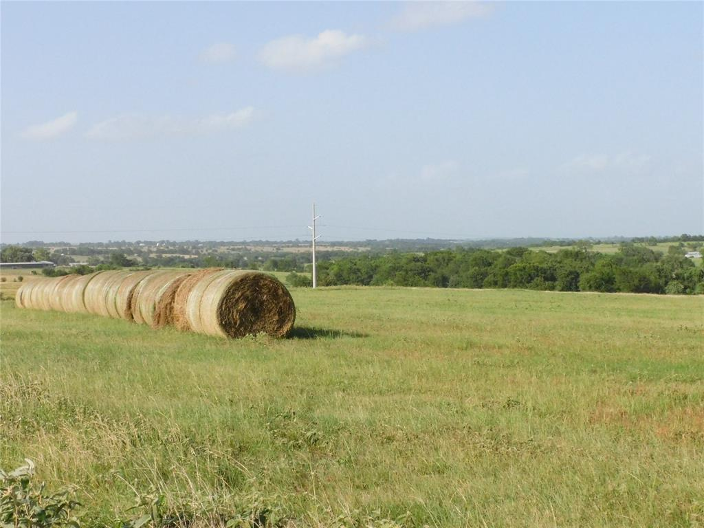 4753 Blezinger Road Property Photo - New Ulm, TX real estate listing