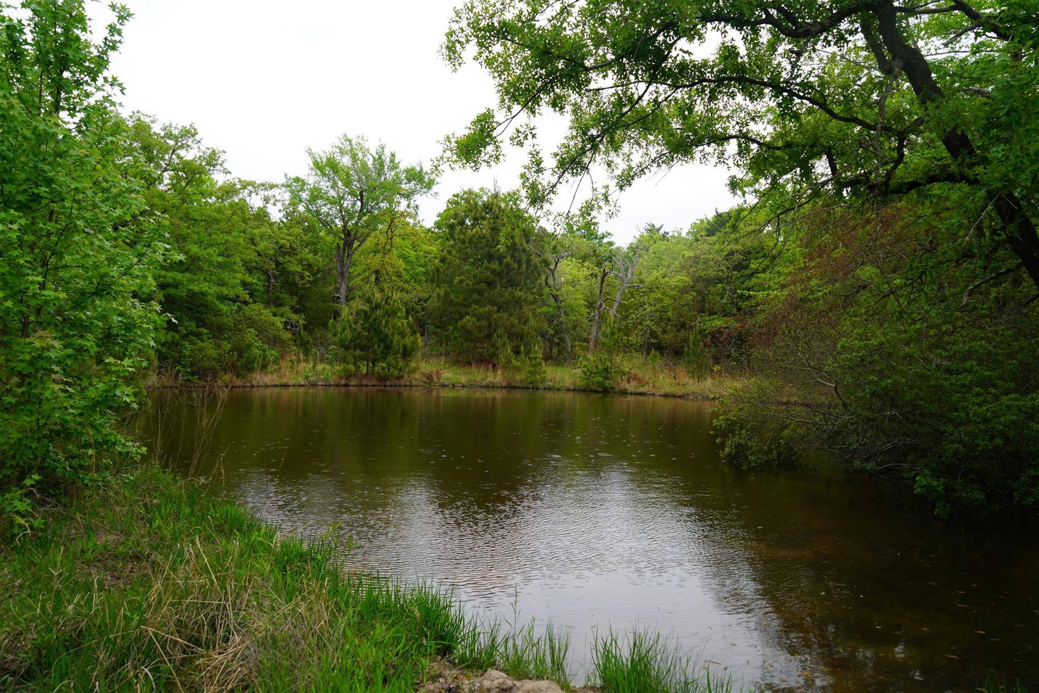 Lot 378D Timber Ridge Property Photo - Larue, TX real estate listing