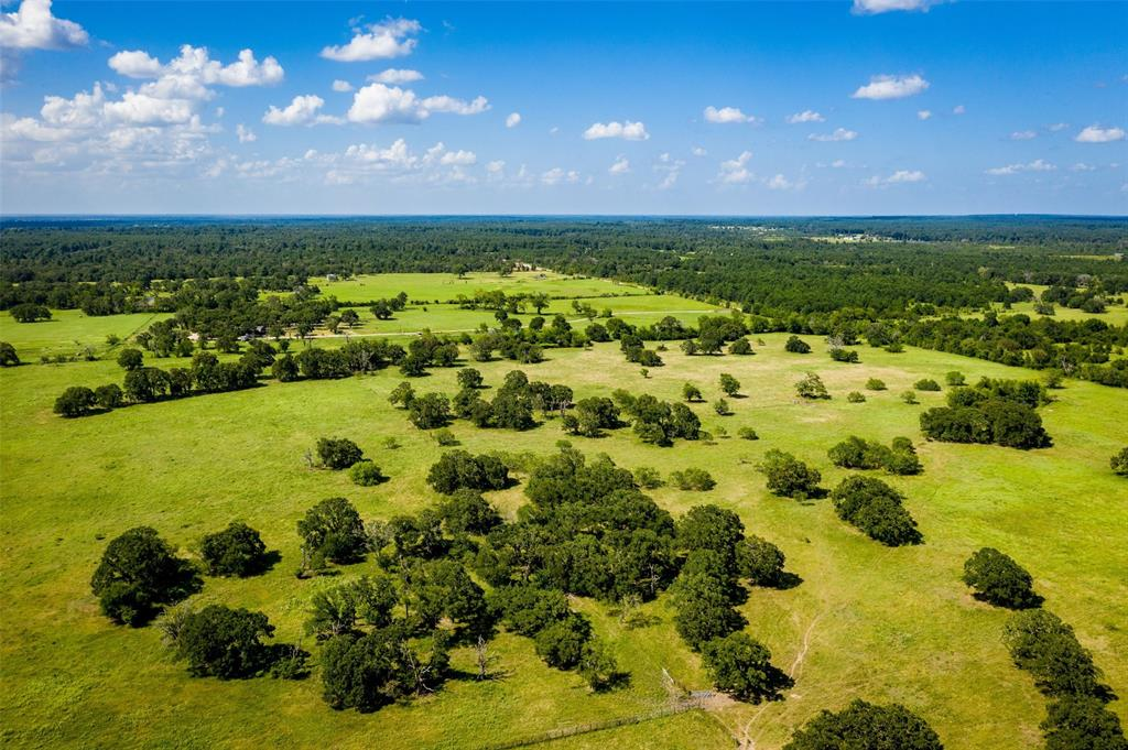 TBD Mustang Road Property Photo - Bedias, TX real estate listing