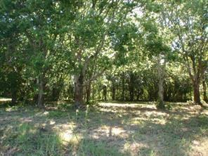 LOT 8 CR 297 Duncan Drive Property Photo - Oyster Creek, TX real estate listing