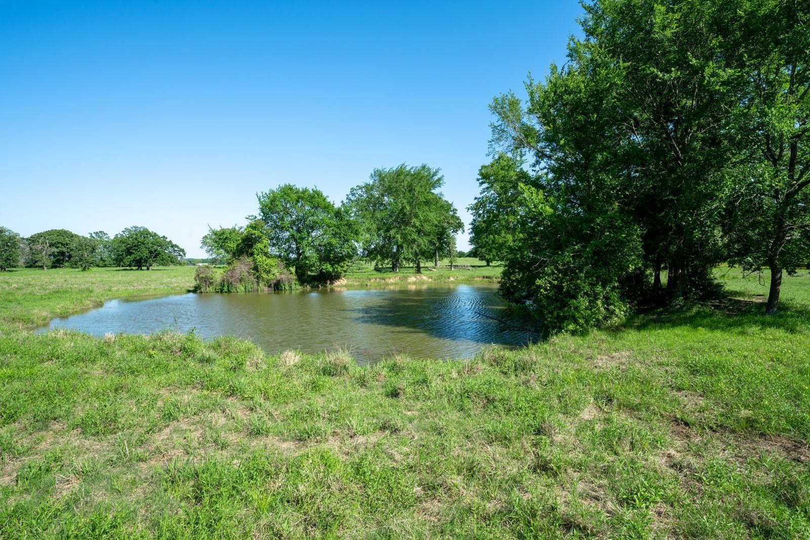 44 Acres Osr Property Photo