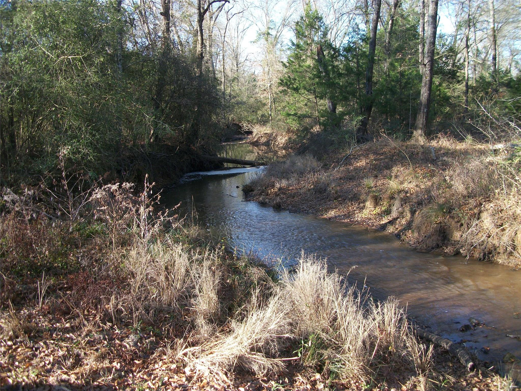 00 An County Road 2212 Property Photo - Palestine, TX real estate listing
