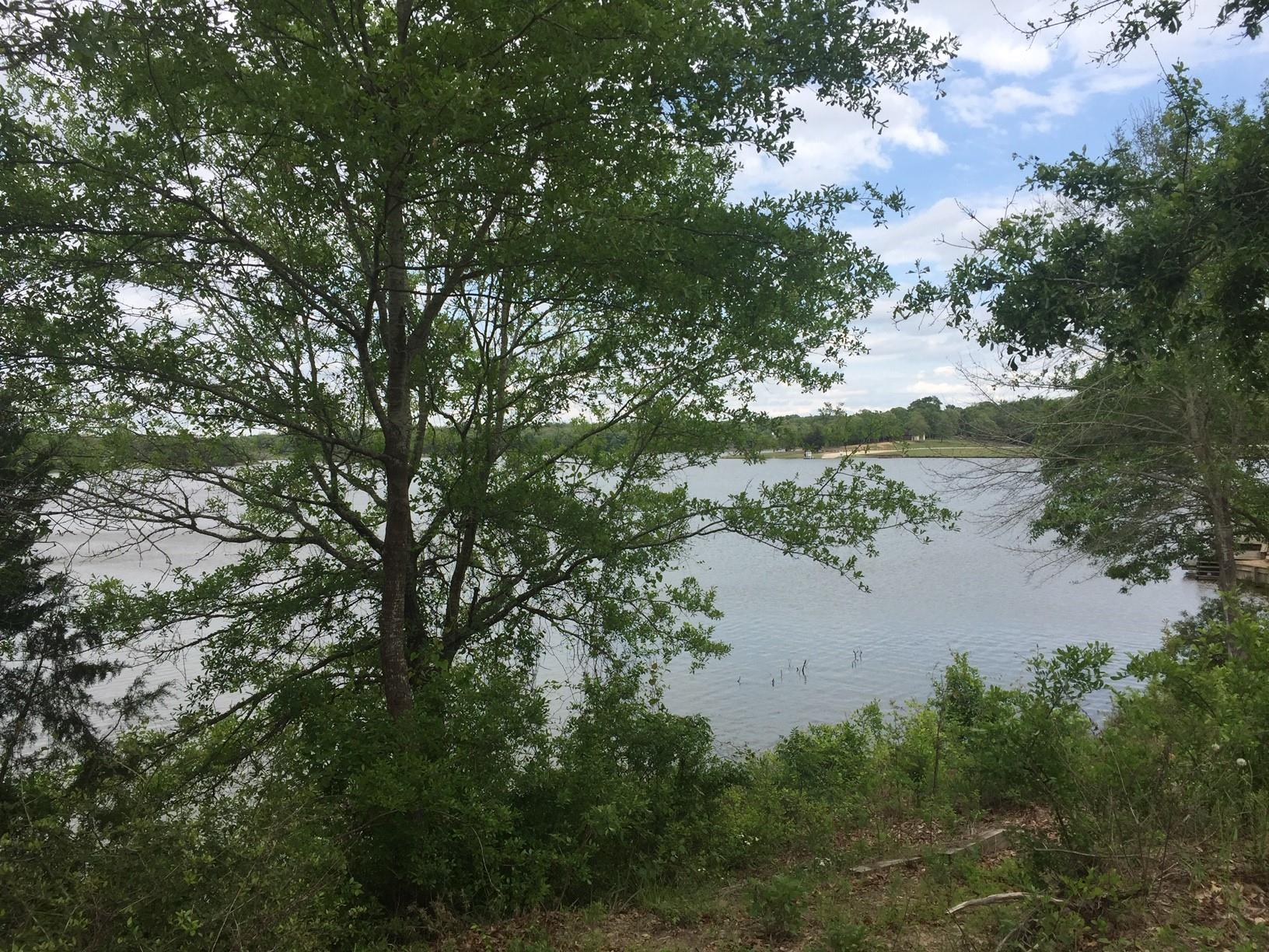 35 & 37 Trailride Property Photo - Hilltop Lakes, TX real estate listing