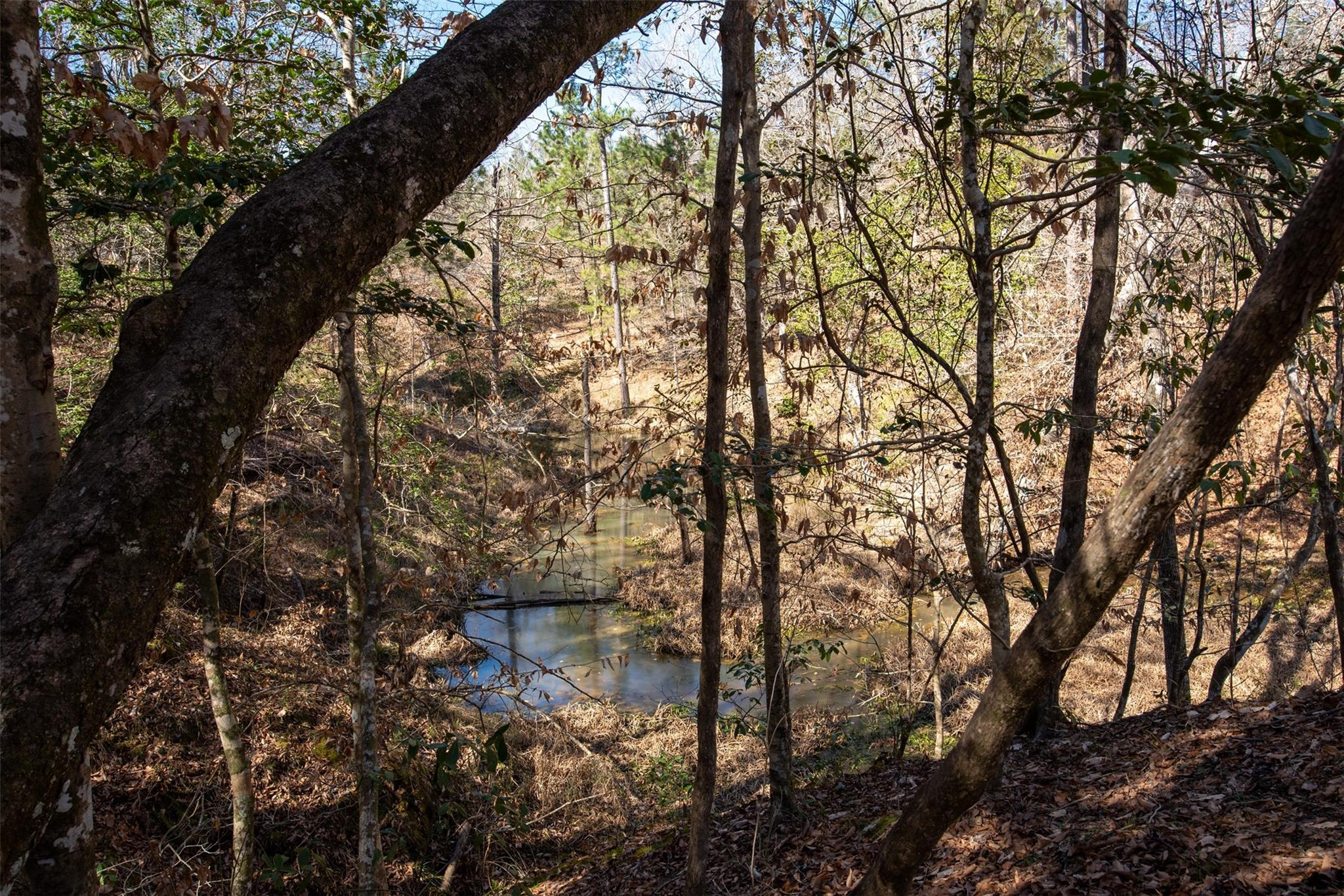 6150 US Highway 287 Property Photo - Woodville, TX real estate listing