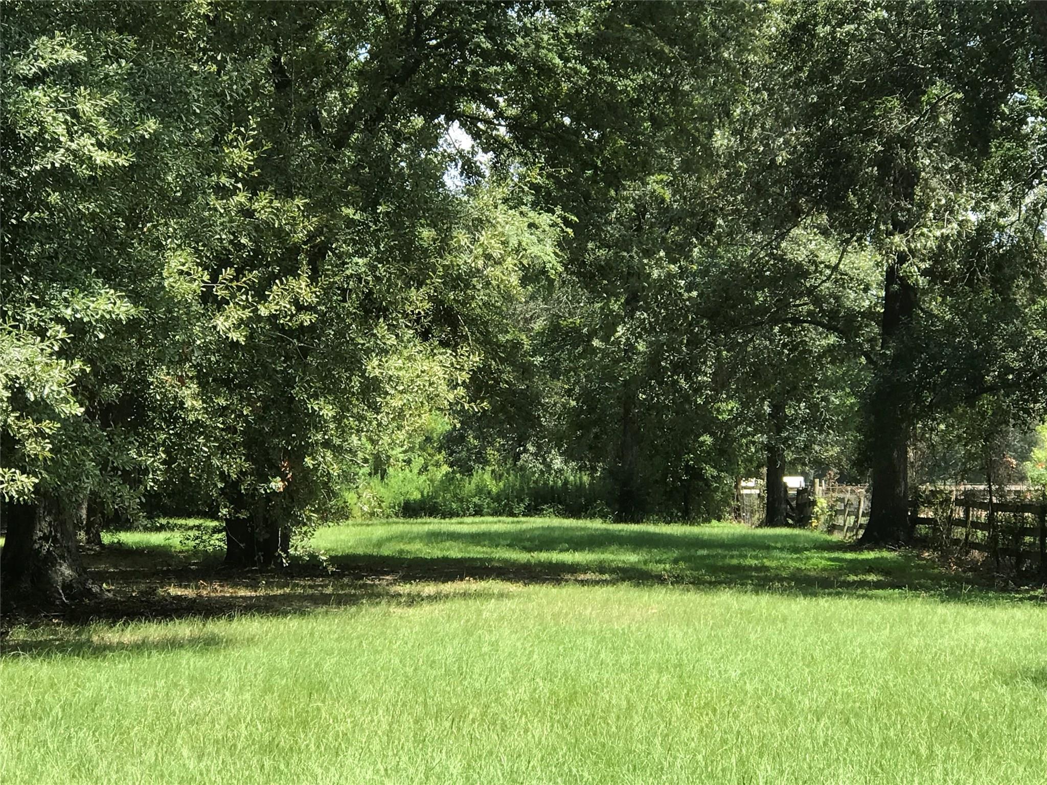 0 East River Road/ Hwy 59 Property Photo - Splendora, TX real estate listing