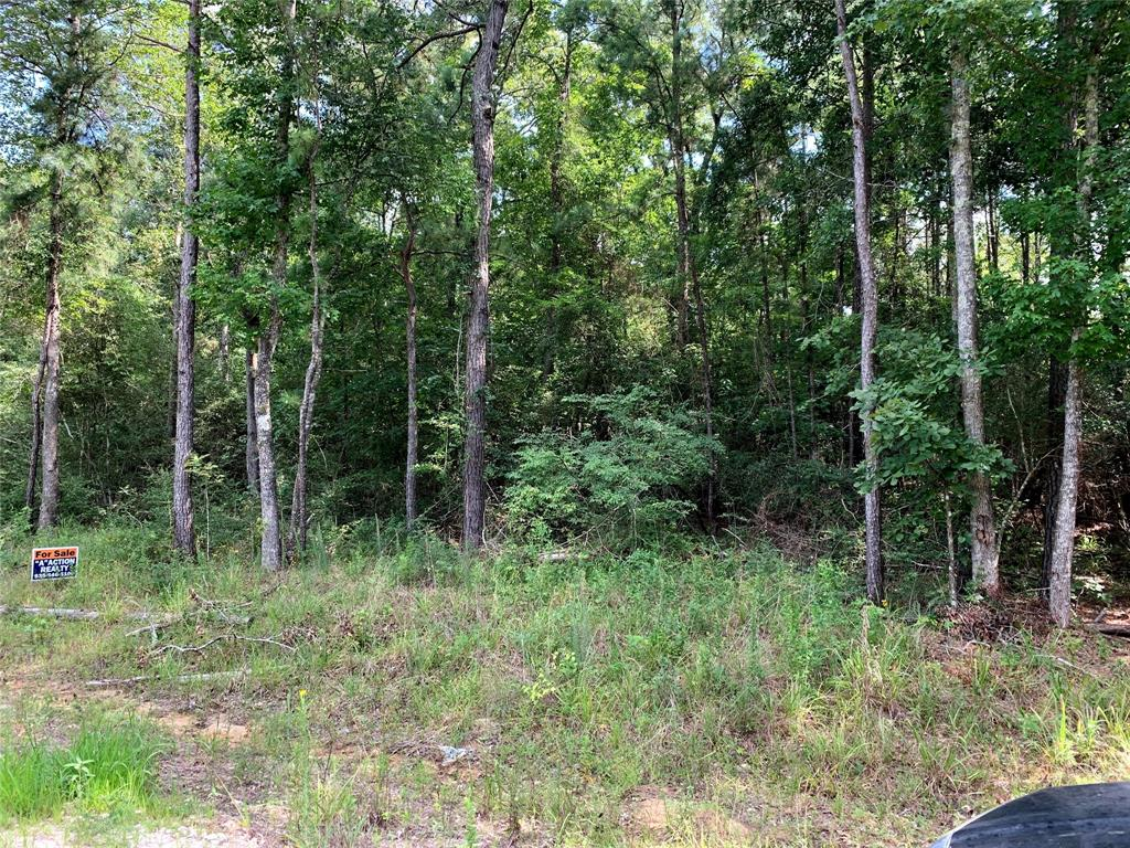 Lot 115 Sweetgum Property Photo - Oakhurst, TX real estate listing