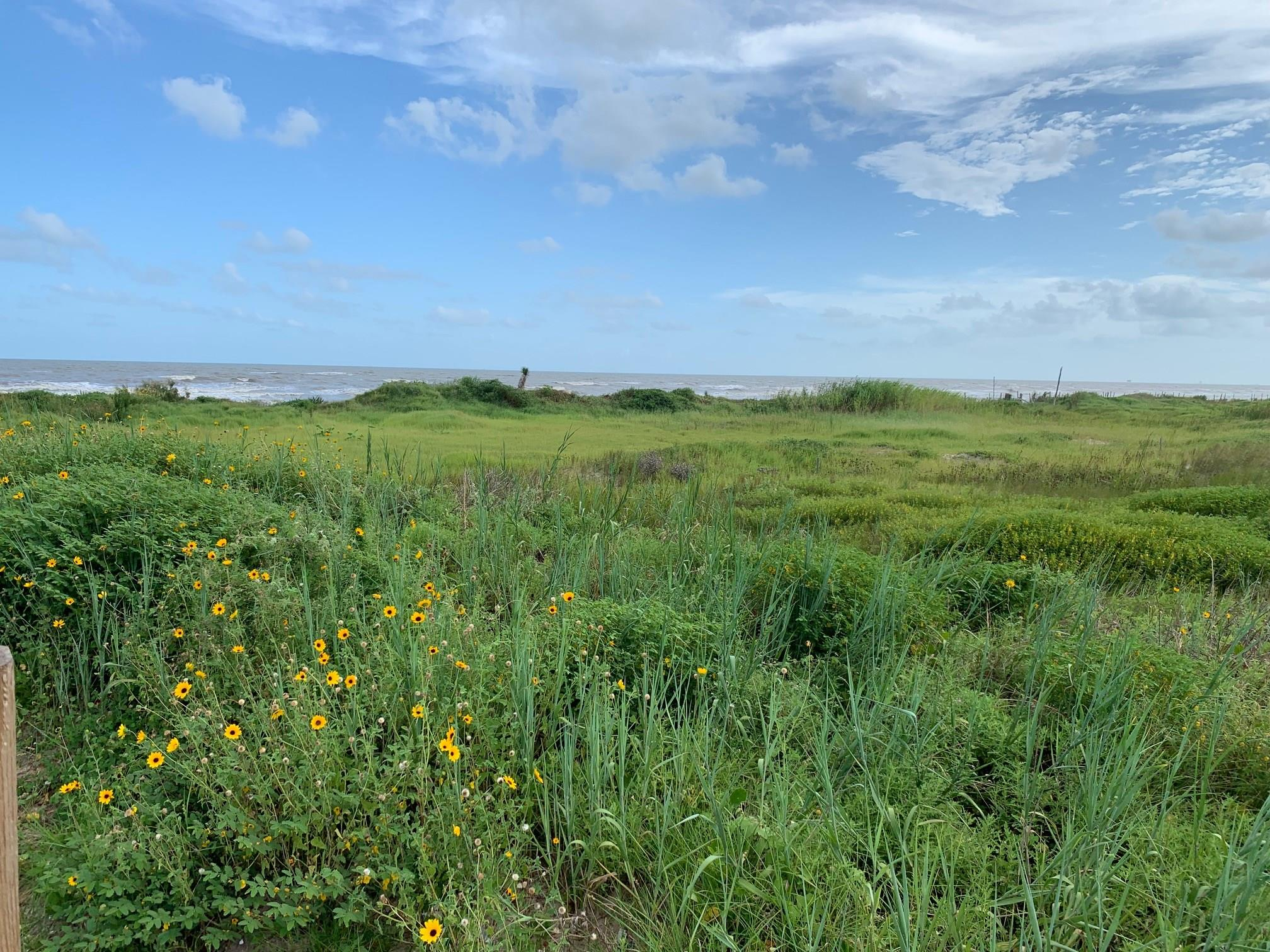 758 Hwy 87 Property Photo - Gilchrist, TX real estate listing