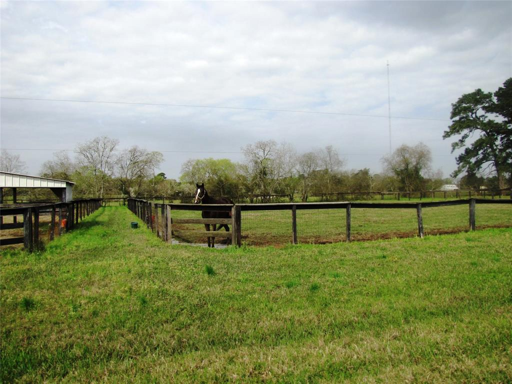 32703 Old Hempstead Rd, Magnolia, TX 77355 - Magnolia, TX real estate listing