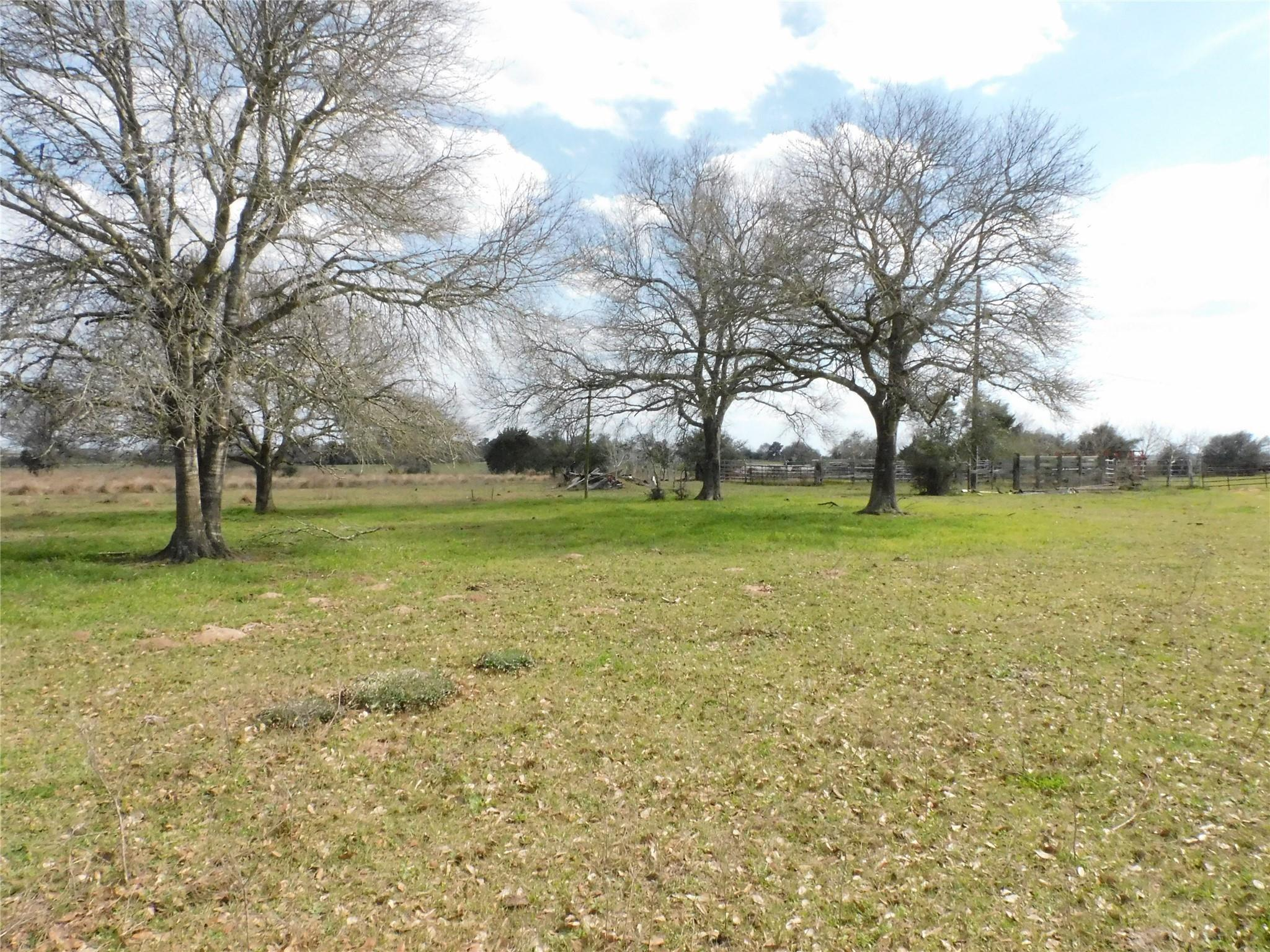 6495 Fm 1094 Property Photo