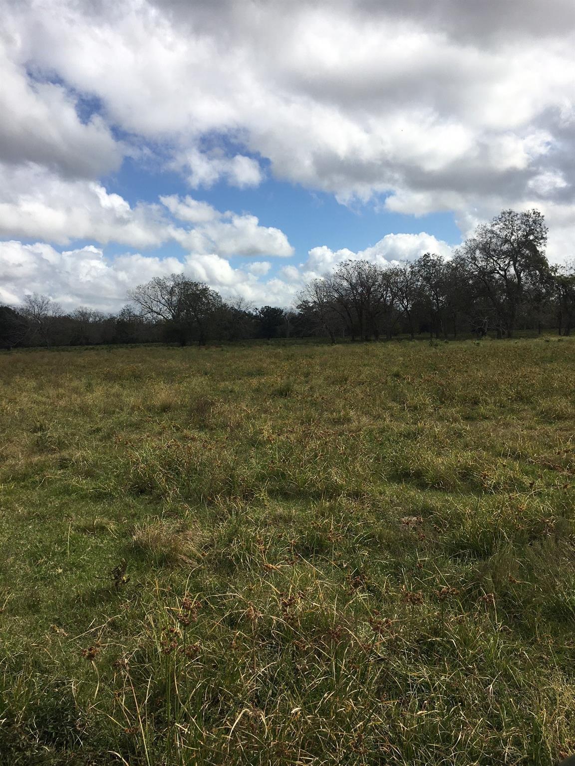0 Hwy 35 Highway Property Photo - Van Vleck, TX real estate listing