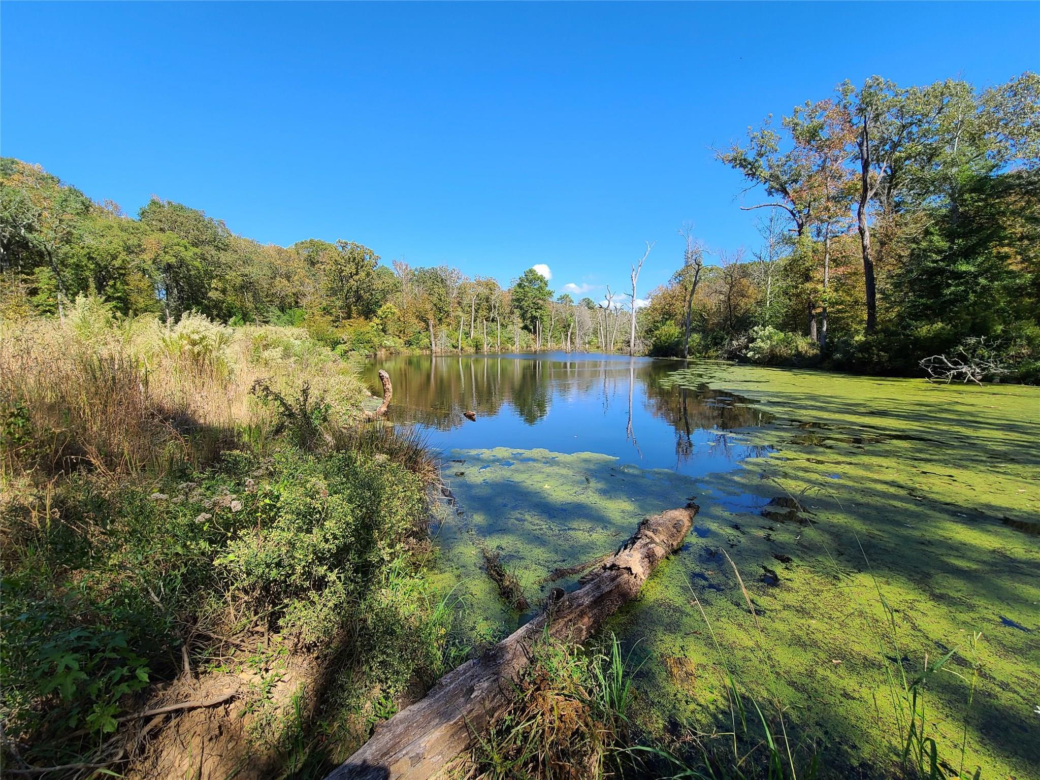 831 FM831 Property Photo - Oakwood, TX real estate listing