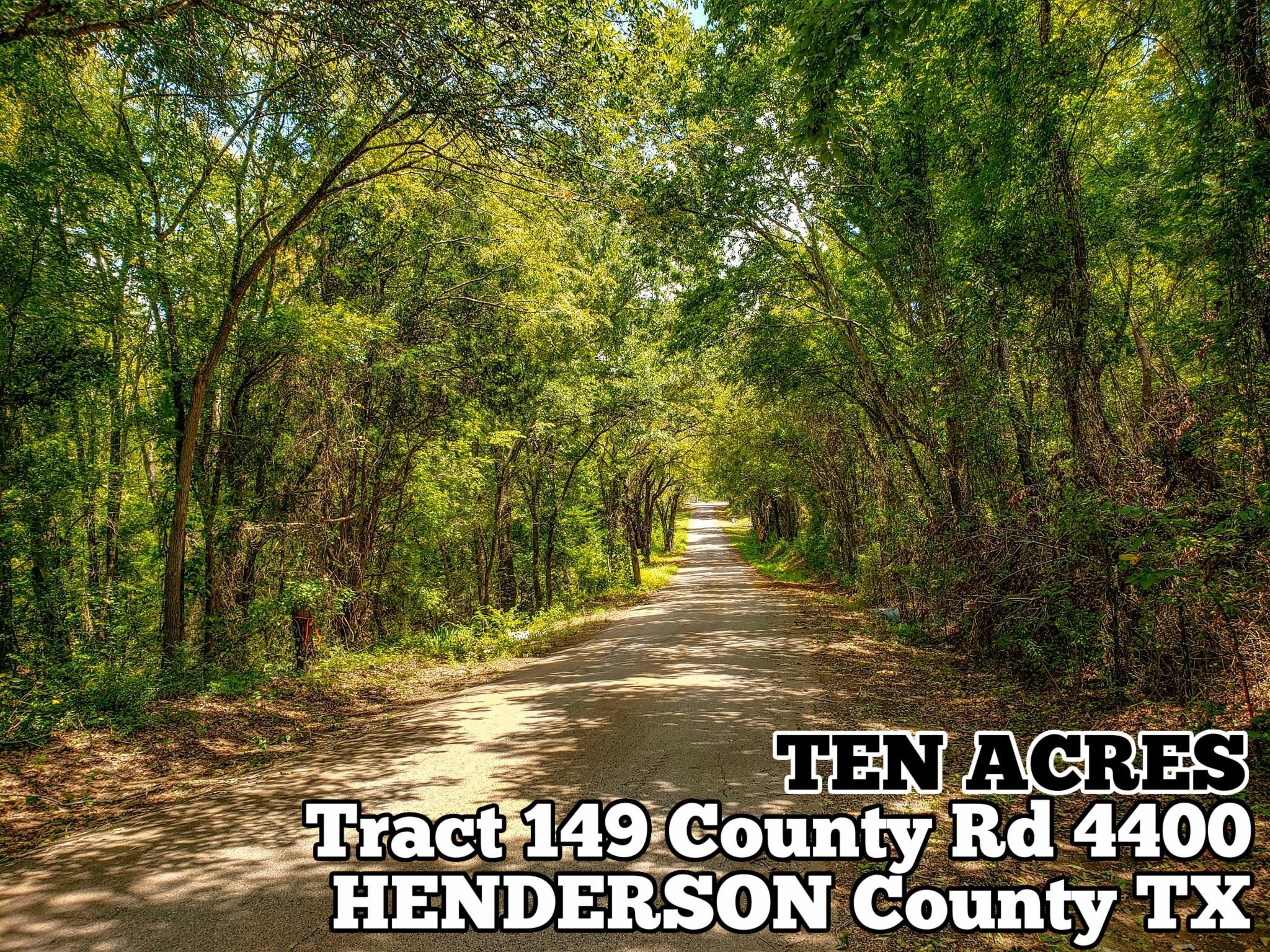 Tract 149 County Road 4400 Property Photo - Larue, TX real estate listing