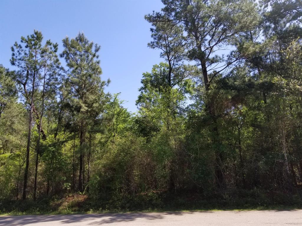 0 Highland Boulevard Property Photo