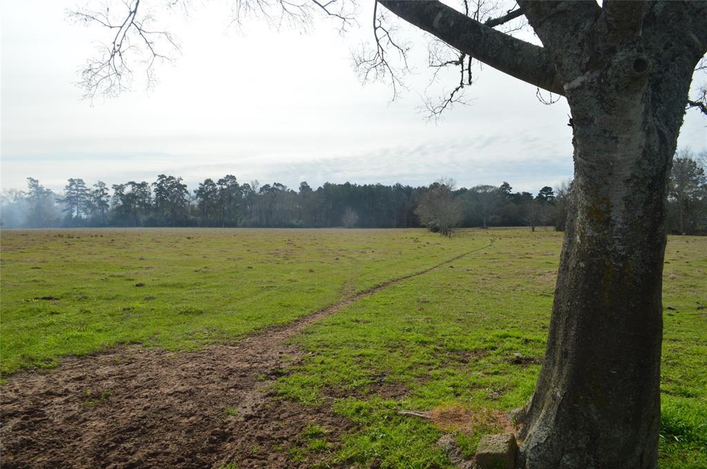 TBD 001 Wiggins Property Photo - Conroe, TX real estate listing