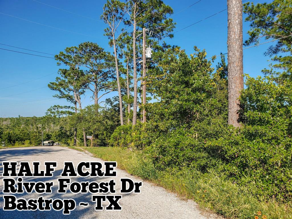 Lot 69 River Forest Drive Property Photo - Bastrop, TX real estate listing