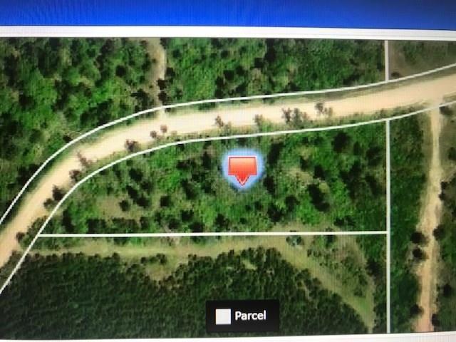 0 Piney Creek Road, Groveton, TX 75845 - Groveton, TX real estate listing