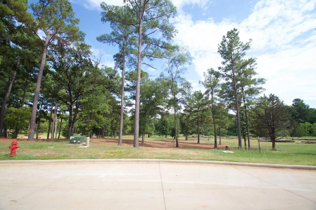 22258 Mallards Cove Ct Property Photo - Bullard, TX real estate listing