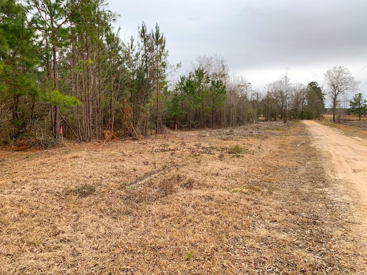 0000 CR 482 Property Photo - Kirbyville, TX real estate listing
